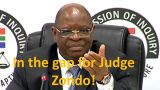 In the gap for Judge Zondo